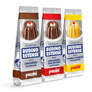 Budini-sacchetto